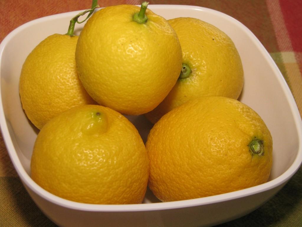 Uber Lemon Ice Cream Lemons