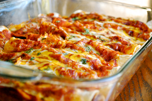 shredded-chicken-enchiladas